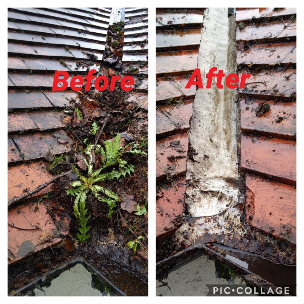 gutter cleaning businesses